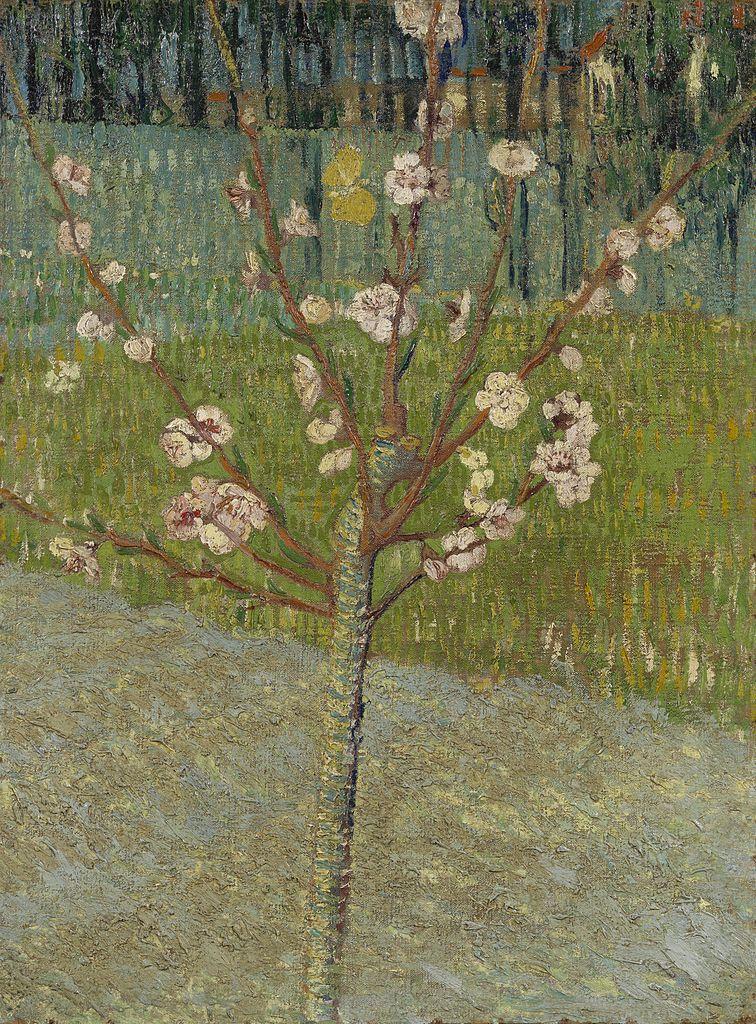 Het bloeiende amandelboompje (1888)